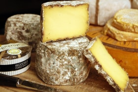 Cheese makes everything taste better. But why?