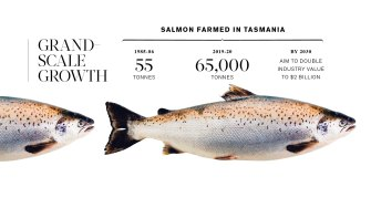 Source: UTAS; Tasmanian Government Department of Primary Industries, Parks, Water and Environment submission to the Fin Fish Inquiry; Tasmanian Salmonid Growers Association.