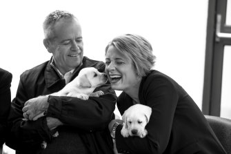 Bill Shorten meets puppies with Labor senator Kristina Keneally.