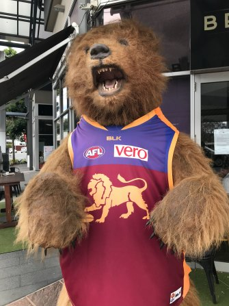 The Brisbane Lions are roaring in 2020.