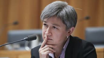 Stop populist attacks on foreign aid, Penny Wong urges critics