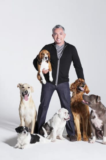 Best friends ... dog whisperer Cesar Millan says our canine companions remind us of life's simplicities.