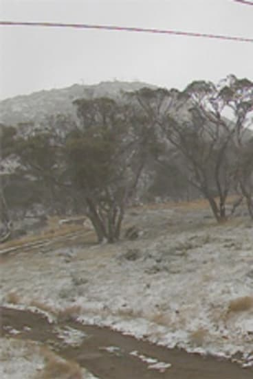 An image from Perisher's Happy Valley snow cam at 10.45am on Friday, April 19.