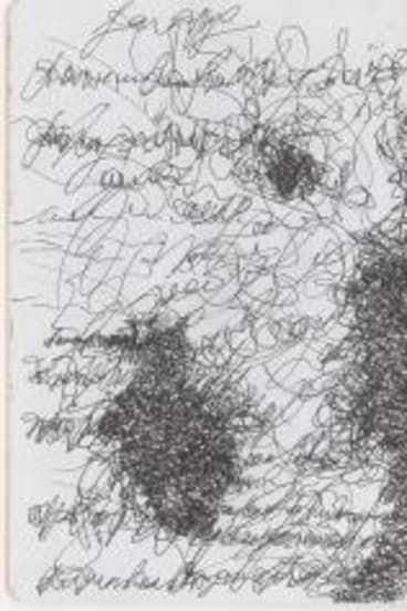 Elizabeth Banfield's sketchbook.