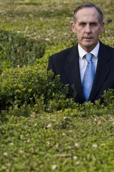 Out of the woods... Bob Brown is leading his party into a new era. But what about its brand?