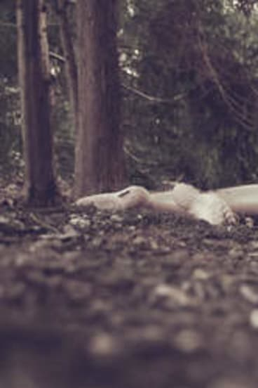 A person lies down to listen to a story in <i>Gardens Speak</i>.