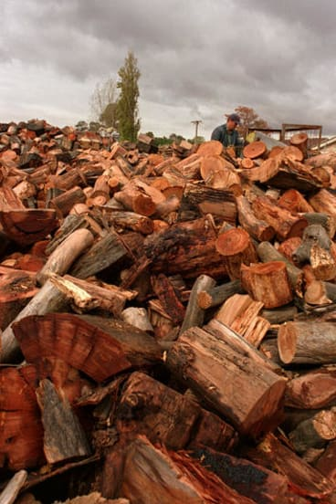 The state government cancels fees for removing firewood from public land.