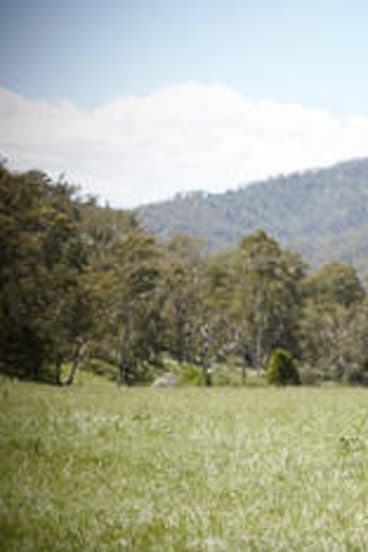 Ranging concerns ... Charlie Lovick's daughter, Kellie, shares her father's passion for the high country.