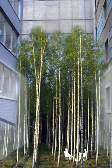 Surprising ... an artist's impression of Infinity Forest which will be installed in Penfold Place as part of the Laneways By George!  project.