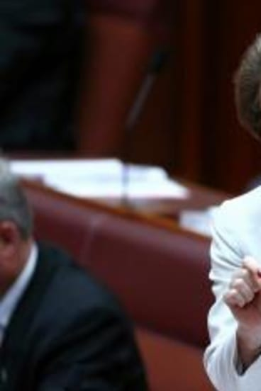 Assistant Immigration Minister Michaelia Cash confirmed her department investigated allegations against Sydney TAFE.