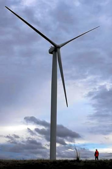 Another of Infigen's wind farms.
