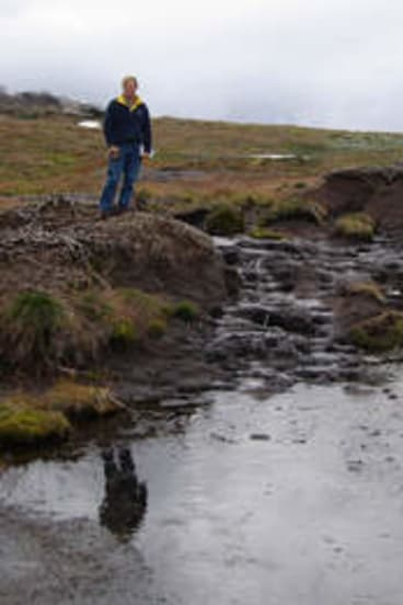 Protective detail … former Labor environment minister John Thwaites beside a damaged peat bed, before his government banned alpine grazing in 2005.
