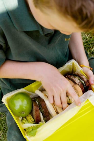 A new curriculum will outline the importance of good food and healthy habits for long-term health.