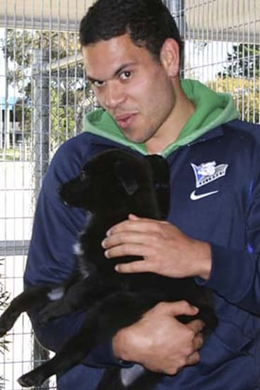 A close relationship has been forged between the Bulldogs and the RSPCA.