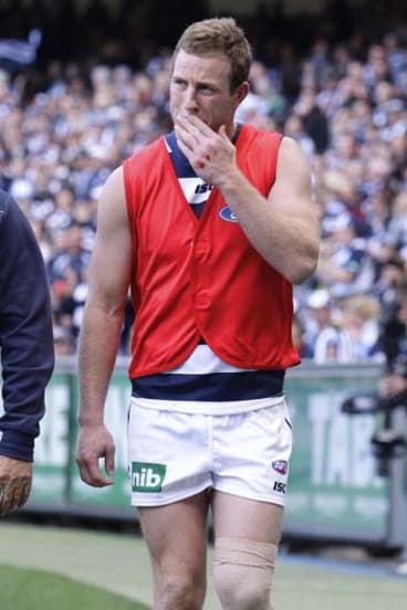 Steve Johnson after he was injured in the preliminary final.