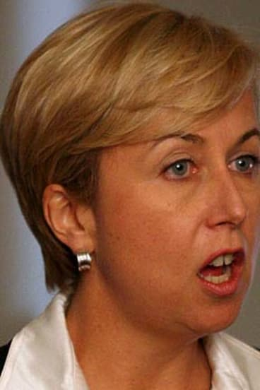 Former NSW health minister Reba Meagher is now a lobbyist to state politicians.