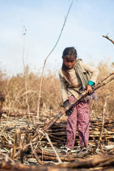 From 5am, several days a week, 11-year-old Li* works alongside her mother, brother and uncle in a Cambodian cane field. The work is hot, hard and long. For bundling 600 pieces of sugar cane she receives one cent. In 2010, they were forcibly evicted to make way for a sugar plantation owned by one of Cambodia's richest men. *Li is a pseudonym to protect the girl's identity.