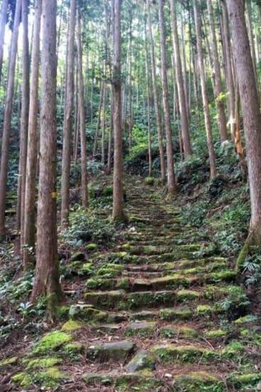 Unmapping the End of the World, Kumano Kodo pilgrimage.