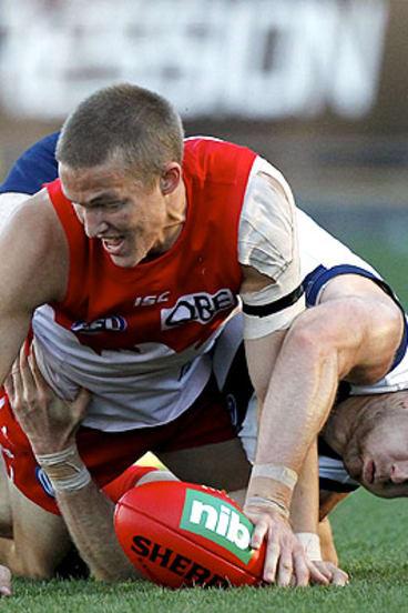 Where's the ball? Sydney's Sam Reid and Geelong's Tom Lonergan battle for possession yesterday.