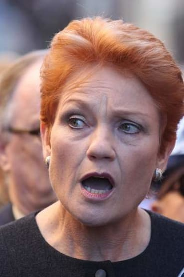 Providing opinion ... Pauline Hanson appeared on ACA story about 'All-Asian Mall'.