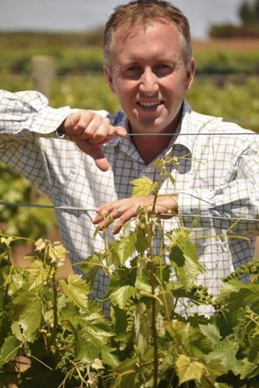 Viticulturist Ashley Ratcliff.