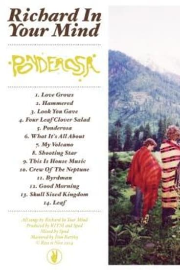 Highly influenced: Richard in Your Mind have pieced together many psychedelic styles on Ponderosa.