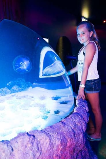 Australia's largest exhibit of jelly fish has been unveiled at UnderWater World SEA LIFE Mooloolaba as part of a two-year $6.5m refurbishment of the Queensland aquarium.