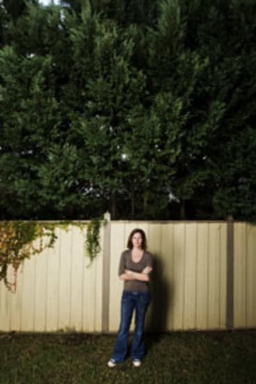 Laws to trim spite hedges down to size tired of having her views blocked julie giannesini of mosman and spiritdancerdesigns Choice Image