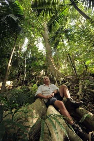 John Perkins, a member of Friends of Durras and a NSW National Parks volunteer, sits on a Strangler Fig tree in the Murramarang National Park, near Pebbly Beach.