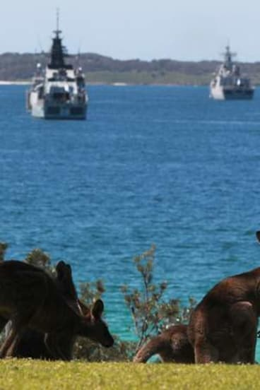 Hoo roo: Watched by a pair of kangaroos, naval ships from several countries gather in Jervis Bay before the Naval Fleet Review on Sydney Harbour.