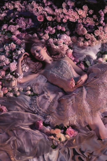 David McAllister will direct <i>Sleeping Beauty</i> in 2014.