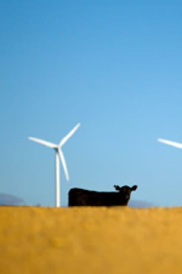 The movement against wind farms may be dissipating.