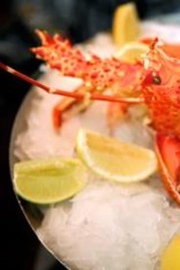 "The ""market-price"" crayfish at the Atlantic."