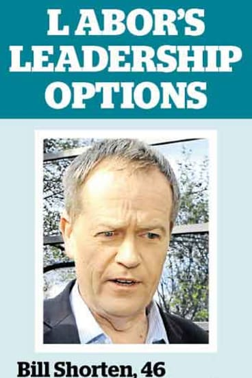 The Labor MPs in the running for leadership roles.