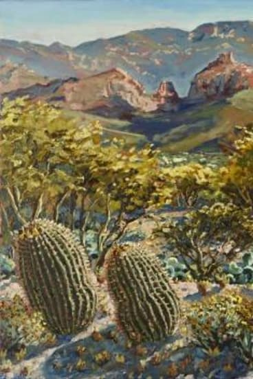 Morning, Alta Vista, Tucson, by Lucy Culliton