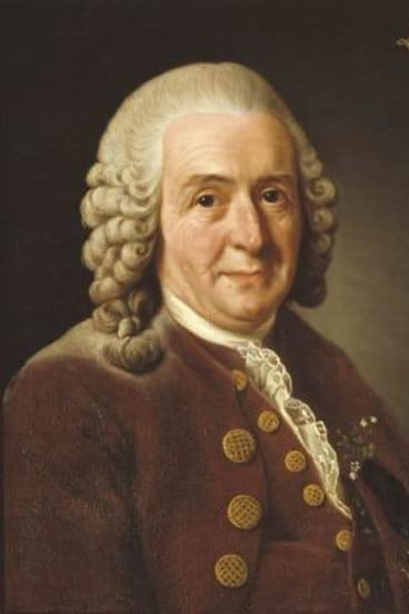 Carl Linnaeus: botanist and Wikipedia star.