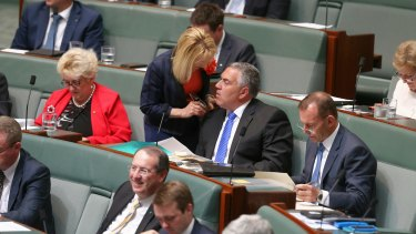 Chief government whip Nola Marino in discussion with former treasurer Joe Hockey during question time on Monday.