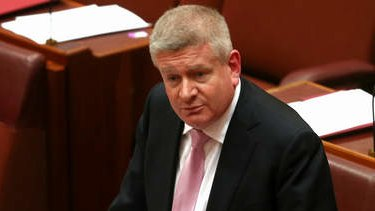 Manager of Government Business in the Senate, Senator Mitch Fifield, during a motion to vary the routine of business in the Senate. Photo: Alex Ellinghausen