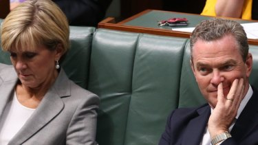 Foreign Affairs Minister Julie Bishop and Innovation Minister Christopher Pyne in question time on Tuesday.
