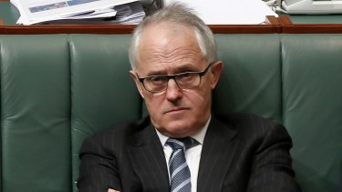 Communications Minister Malcolm Turnbull during question time on Wednesday.