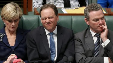 Environment Minister Greg Hunt in question time on Wednesday.