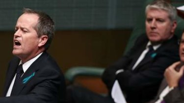 Opposition Leader Bill Shorten defends Senator Stephen Conroy. Photo: Alex Ellinghausen