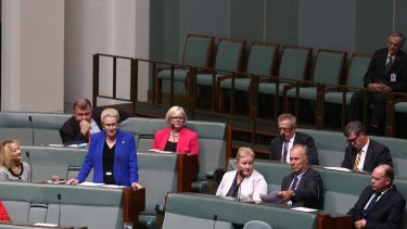 Bronwyn Bishop delivers her farewell speech to Parliament on Wednesday.