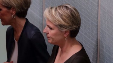 Foreign Affairs Minister Julie Bishop and shadow minister Tanya Plibersek in Question Time on Thursday.