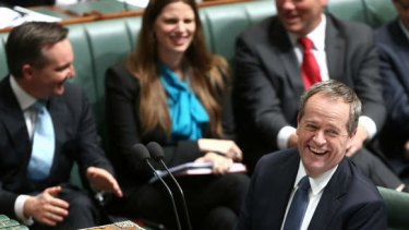 Opposition Leader Bill Shorten during question time on Thursday. Photo: Alex Ellinghausen