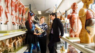 Anatomical services specialist Hannah Lewis, Associate Professor of Anatomy Krisztina Valter, and ANU body and tissue donation coordinator Dr Riccardo Natoli. Photo: Sitthixay Ditthavong
