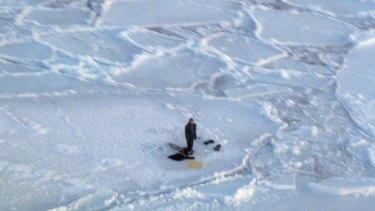 Shot a polar bear dead ... Jupi Nakoolak is seen trapped on a floating chunk of ice.