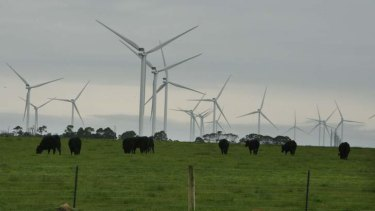 A turbulent issue: anti-windfarm advocates are pressing for review.