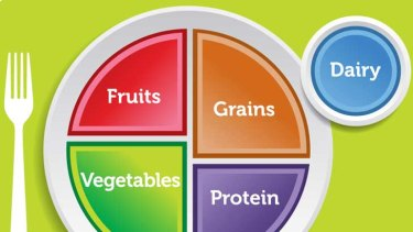 The MyPlate design, which is replacing the food pyramid in the US.