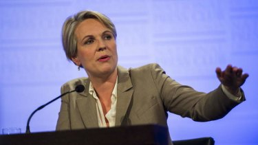 Former health minister Tanya Plibersek has secured the deputy opposition leader spot.